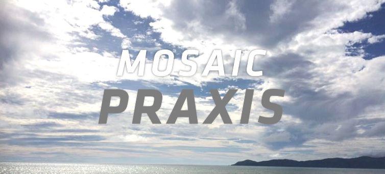 plain Praxis banner