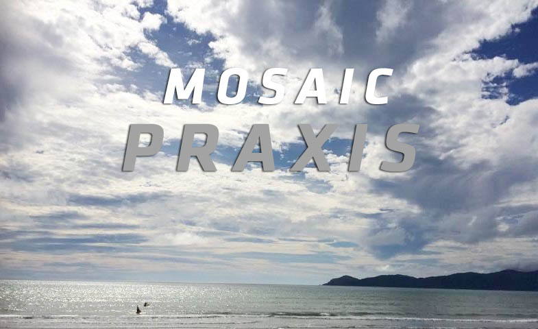 Praxis 3 Sep 1:30-3:30PM